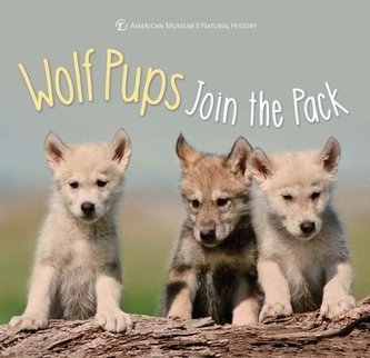 Wolf Pups Join the Pack - Sterling Children's