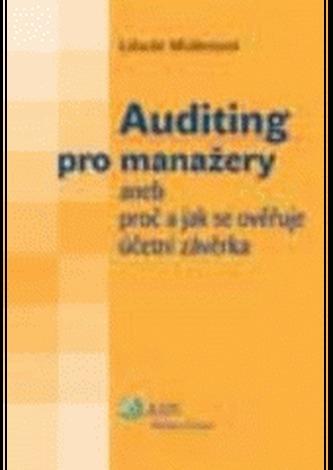 Auditing pro manažery