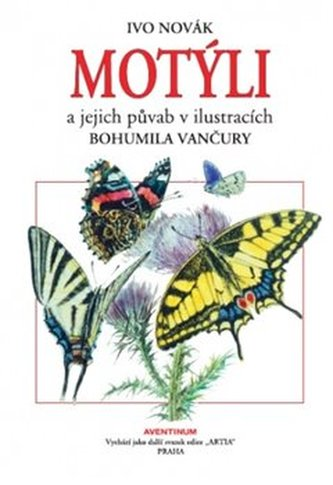 Motýli a jejich půvab