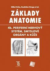 Základy anatomie. 4b. Periferní nervový systém, smyslové orgány a kůže