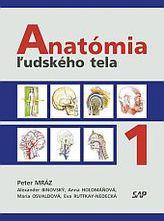 Anatómia ľudského tela I.