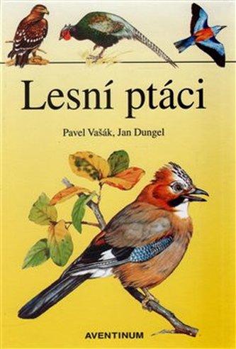 Lesní ptáci - Pavel Vašák