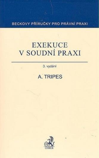 Exekuce v soudní praxi