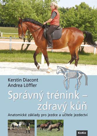 Správný trénink - zdravý kůň