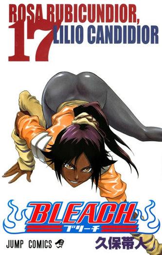 Bleach 17