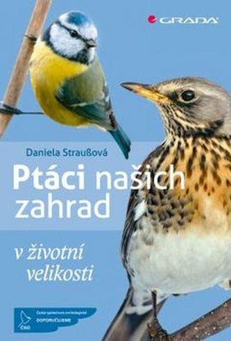 Ptáci našich zahrad v životní velikosti - Daniela Strauß