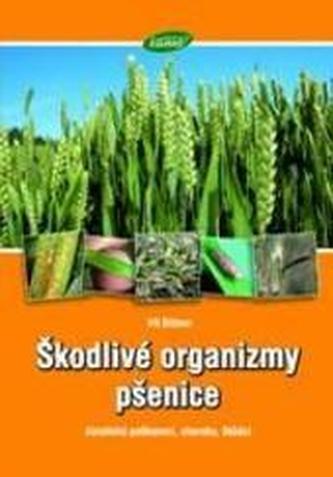 Škodlivé organizmy pšenice