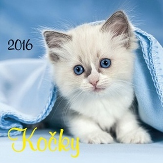 Kočky 2016 - nástěnný kalendář