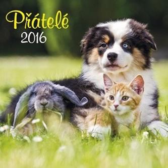 Přátelé 2016 - nástěnný kalendář