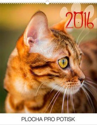 Kočky Praktik - nástěnný kalendář 2016