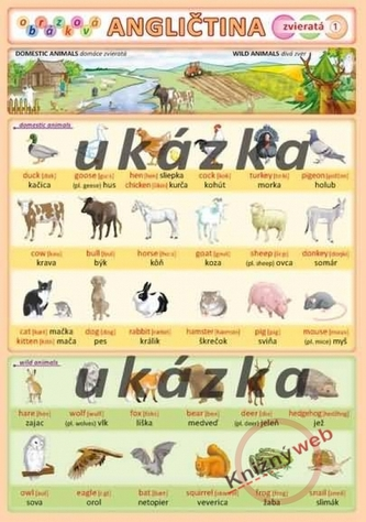 Obrázková angličtina 1 - zvieratá - Kupka a kol. Petr