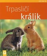 Trpasličí králik - Ako na to