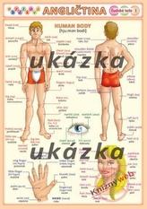 Obrázková angličtina 3 - ľudské telo