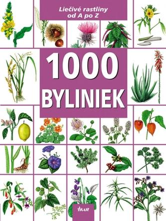 1000 Byliniek