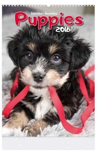 Puppies - nástenný kalendář 2016