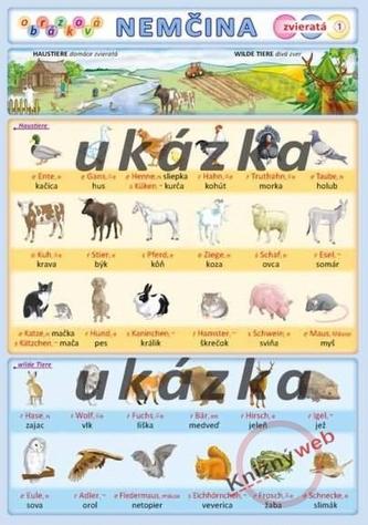 Obrázková nemčina 1 - zvieratá - Kupka a kol. Petr