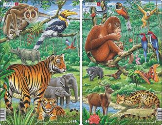 Puzzle MIDI - Zvířata v Indii,JV Asii /29 dílků (2 druhy)