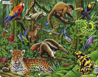 Puzzle MAXI - Deštný prales Jižní Ameriky/70 dílků