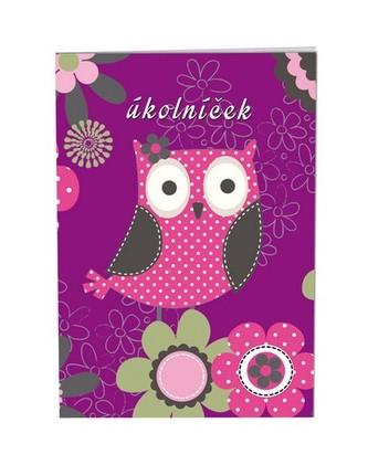 Školní úkolníček A6 - Owl
