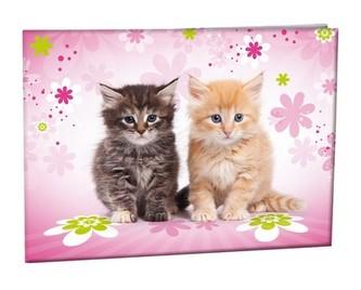 Školní desky na číslice - Cats
