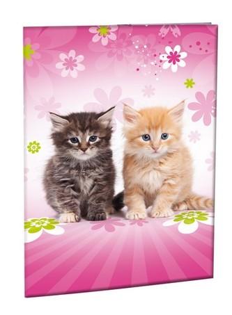 Školní desky na abecedu - Cats