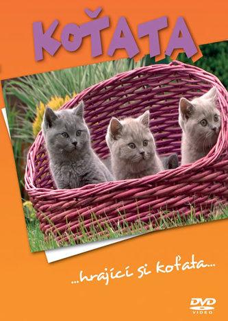 Koťata - DVD - neuveden