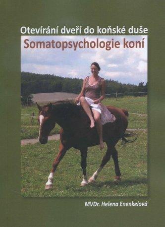 Somatopsychologie koní