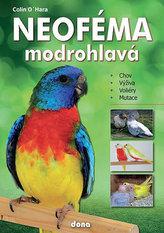 Neoféma modrohlavá - chovatelská příručka