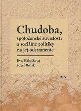 Chudoba, spoločenské súvislosti a sociálne politiky na jej odstránenie