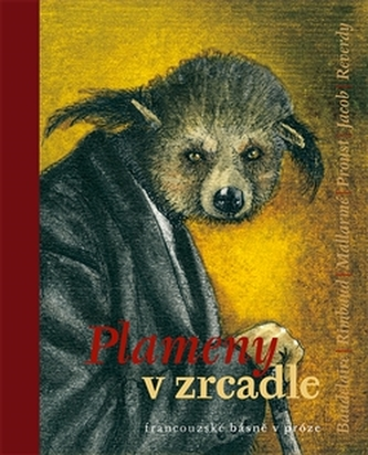 Plameny v zrcadle - Zdeněk Hron