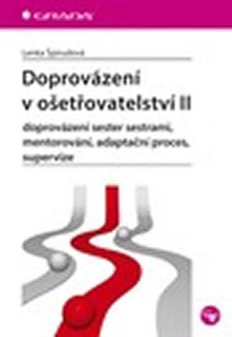 Doprovázení v ošetřovatelství II - doprovázení sester sestrami, mentorování, adaptační proces, supervize