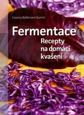 Fermentace - Recepty na domácí kvašení