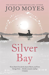 Silver Bay (anglicky)
