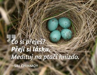 Magnet na lednici - Co si přeješ? Přeji si lásku. Medituj na ptačí hnízdo.