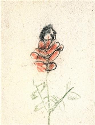 Z růže kvítek vykvet nám - Martin Zet