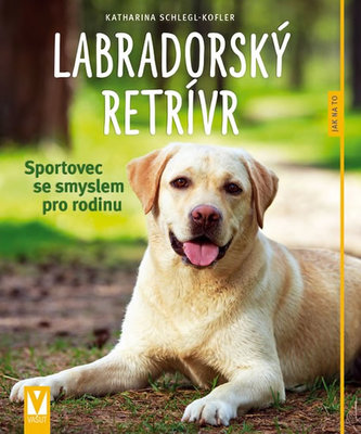 Labradorský retrívr - Sportovec se smyslem pro rodinu