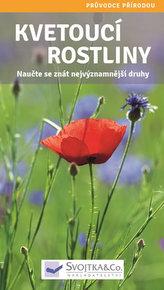 Kvetoucí rostliny - Naučte se znát nejvýznamnější druhy