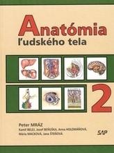 Anatómia ľudského tela 2