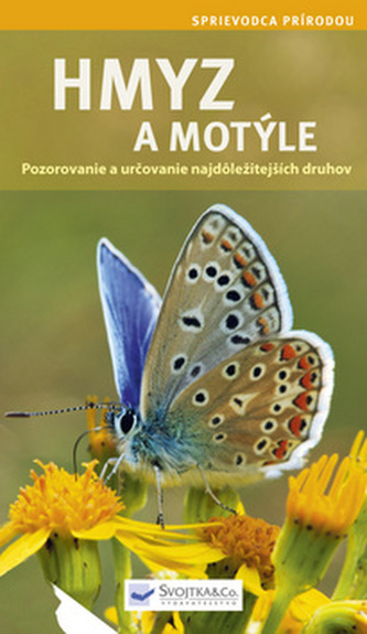 Hmyz a motýle - Anna Schneiderová