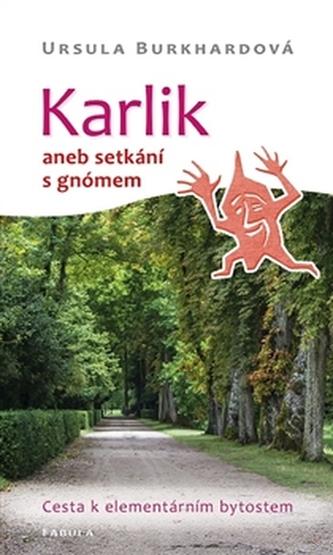 Karlik aneb setkání s gnómem - Burkhardová Ursula
