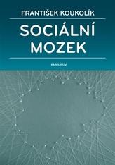 Sociální mozek