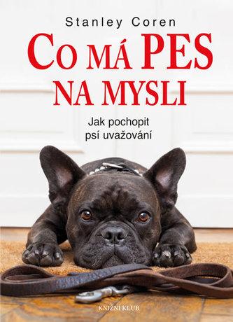 Co má pes na mysli - Jak pochopit psí uvažování
