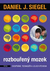 Rozbouřený mozek dospívání, teenageři a jejich výchova