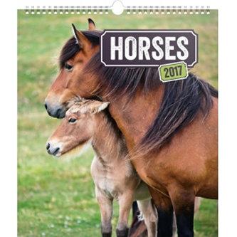 Kalendář nástěnný 2017 - Koně
