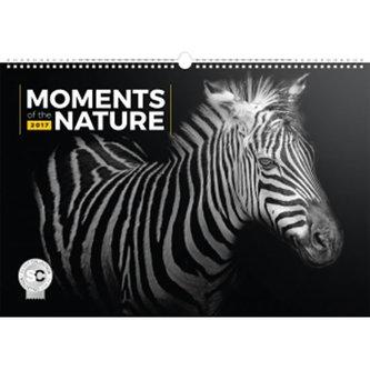 Kalendář nástěnný 2017 - Moments of the Nature