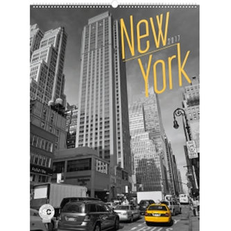 Kalendář nástěnný 2017 - New York/Jakub Kasl