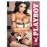 Kalendář nástěnný 2017 - Playboy