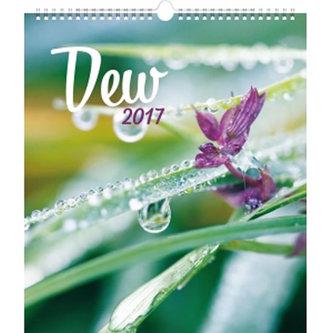Kalendář nástěnný 2017 - Ranní rosa
