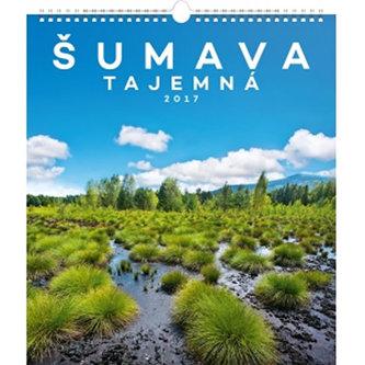 Kalendář nástěnný 2017 - Šumava tajemná