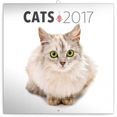 Kalendář poznámkový 2017 - Kočky